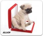Obrázok produktu Allsop, podložka pod myš