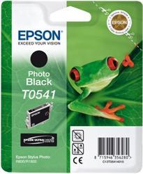 Epson UltraChrome T0541 - C13T05414010